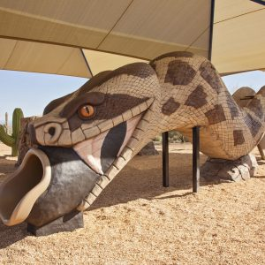Custom Desert Themed Playground with Shade and Snake Slide gallery thumbnail